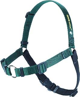 SENSE-ation No-Pull Dog Harness (Green, Medium) by Sense-Ation Harness