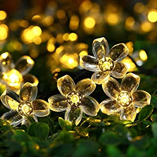 Itmumbai 20 LED Flowers String Lights, Indoor/Outdoor, Fairy for Diwali Christmas/Patio/Garden/Party Decorations (Warm White)
