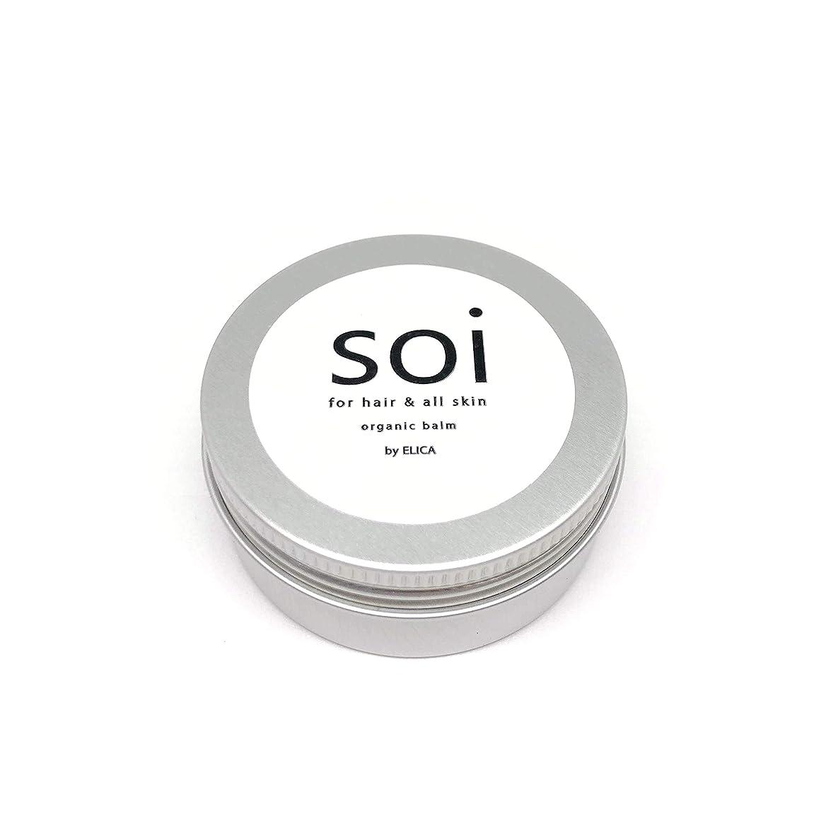 四半期人間横にsoibalm/ソイバーム オーガニックワックス 【濡れ感×自然な束感】濡れ髪風仕上げにおすすめ