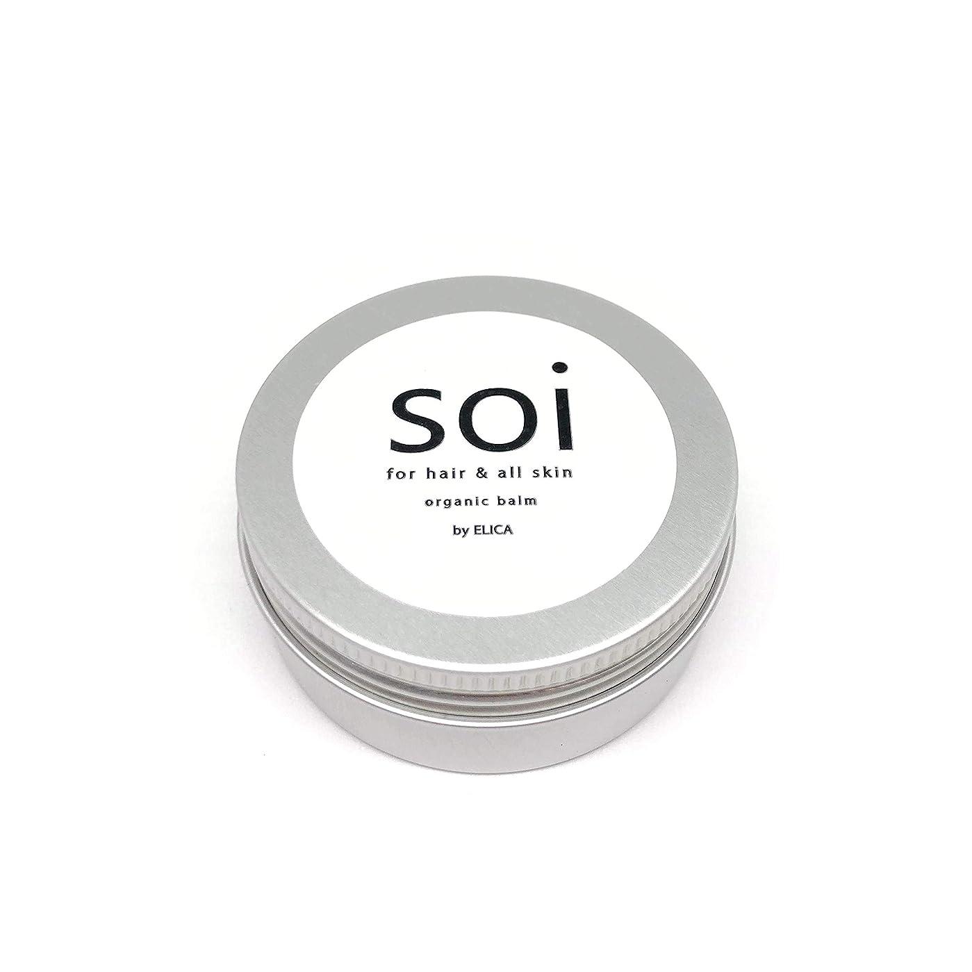 反射メロン気取らないsoibalm/ソイバーム オーガニックワックス 【濡れ感×自然な束感】濡れ髪風仕上げにおすすめ