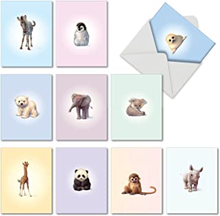 10 Assorted 'Zoo Babies' Blank Greeting Cards with Envelopes 4 x 5.12 inch - Cute and Adorable Animal Note Card Stationery Set for All Occasions, Kids - Panda Bear, Penguin, Monkey, Elephant M6726OCB
