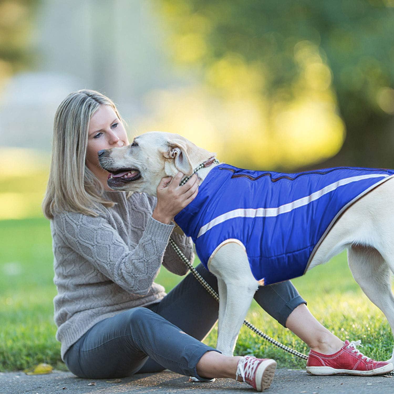 iWUNTONG Abrigo para Perros Chaqueta C/álida Reflectante a Prueba de Viento Ropa para Perros Chaqueta Impermeable para Perros Abrigo Acolchado C/álido Abrigo de Invierno para Mascotas Ropa para Perros