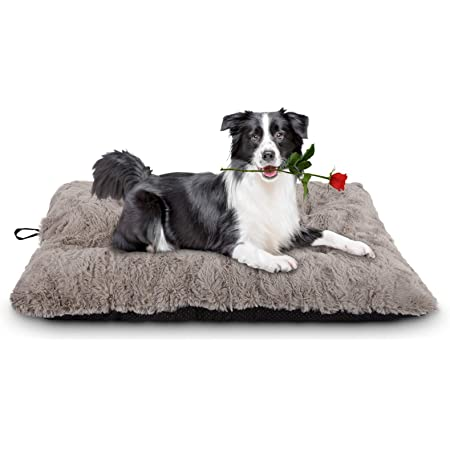 Furhaven Pet Dog Bed Kennel Pad Ultra Plush Curly Faux Fur Crate Or Kennel Mat Tufted Pillow Cushion Pet Bed For Dogs And Cats Latte Small Furhaven Plush
