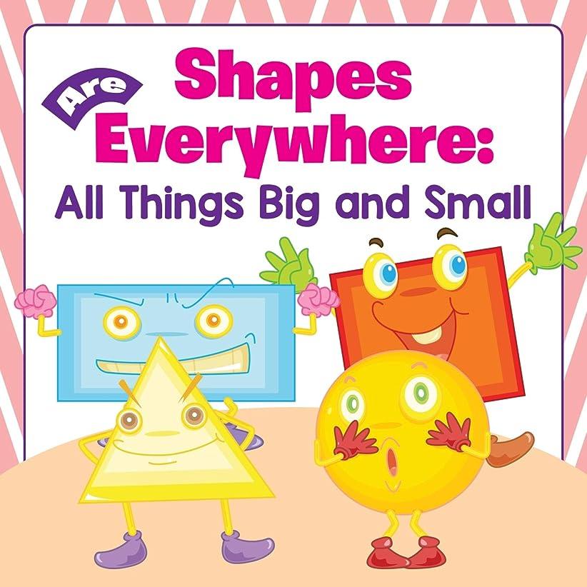 熟考するコンベンションやけどShapes Are Everywhere: All Things Big and Small