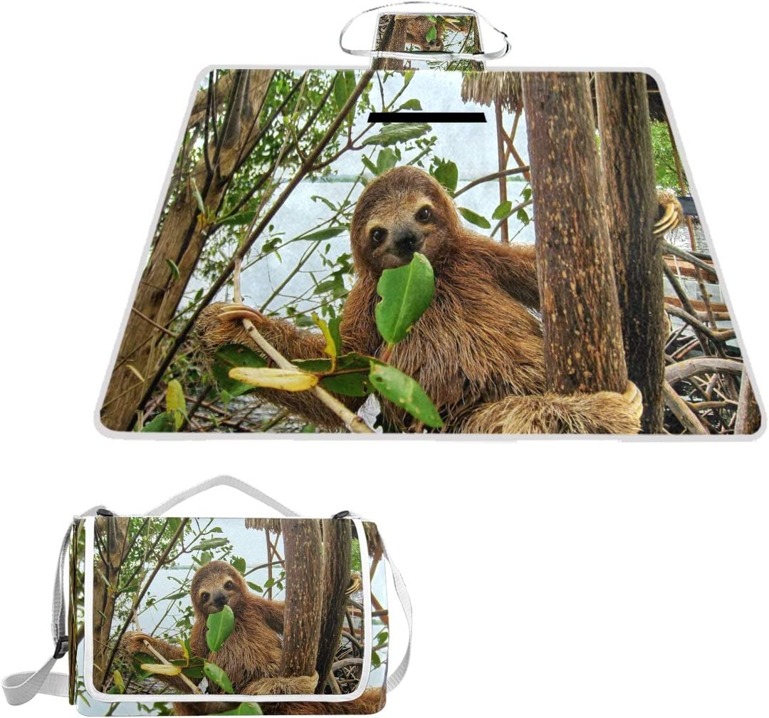 SLHFPX Forest Nature Sloth Picnic Manufacturer regenerated product Camping Trav Beach Outdoor Mat Atlanta Mall