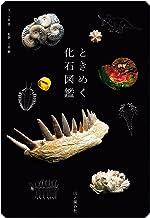 表紙: ときめく化石図鑑 | 土屋 香