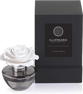 Zodax Illuminaria Porcelain Diffuser, Tahitian Gardenia Fragrance