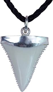 GemShark Shark Tooth Necklace Great White Sterling Silver Cap Winding Charm Pendant for Boys Girls Unisex