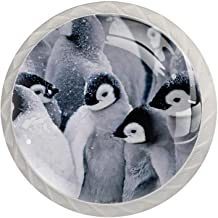 Lade knoppen ronde kristallen glazen kast handgrepen Pull 4 Pcs,Penguin