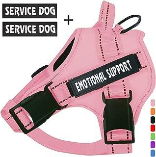Best service cat harness Reviews