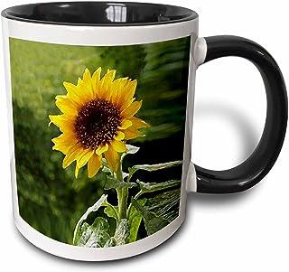 3dRose Sunflower Two Tone Black Mug, 11 oz, Multicolor