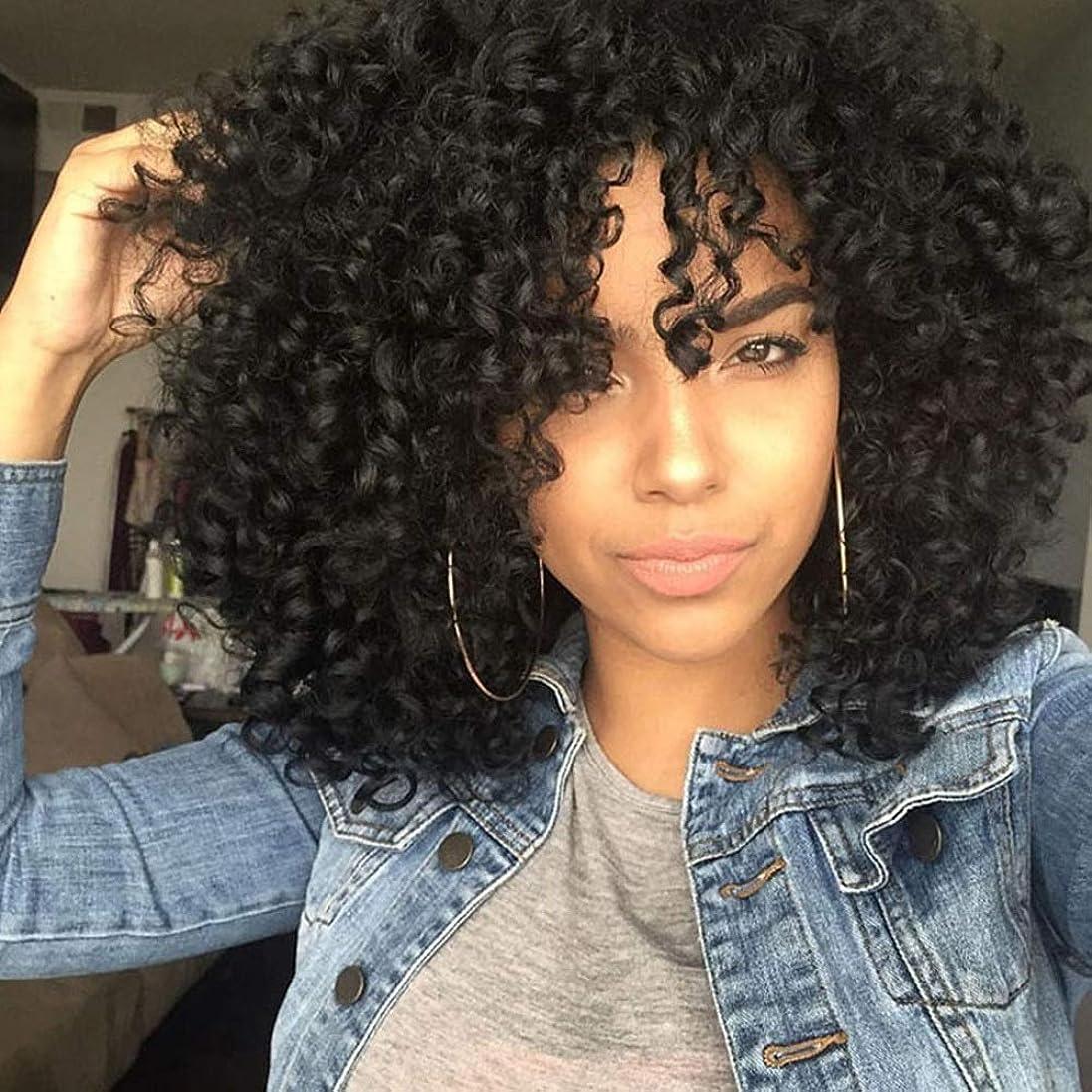 優勢ポーク遺伝子かつら 黒人女性のパーティーのかつらのためのファッション黒の爆発ヘッド人工毛のアフリカの小さな波かつら (色 : 黒)