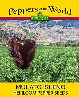 Mulato Isleno - Chocolate Poblano - Sweet and Mild - 10 Heirloom NonGMO Seeds
