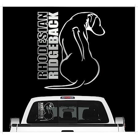 Aufkleber Rhodesian Ridgeback Für Auto Motorrad Anhänger Schilder Fenster Größe 7x7 Cm In Silber Metallic Auto