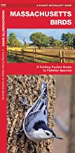 Massachusetts Birds: A Folding Pocket Guide to Familiar Species (Wildlife and Nature Identification)