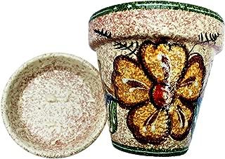 flower pot in spanish