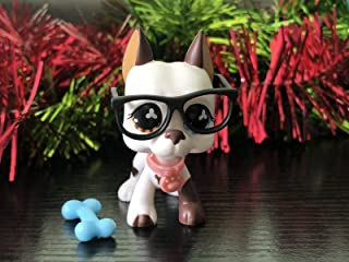 Judy lps Great Dane Dog #577 Figures White Puppy with Different Eyes Orange Brown Eyes with lps Accessories Girls Gift