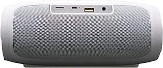 Impex Bluetooth Speaker- BTS 2015,Silver