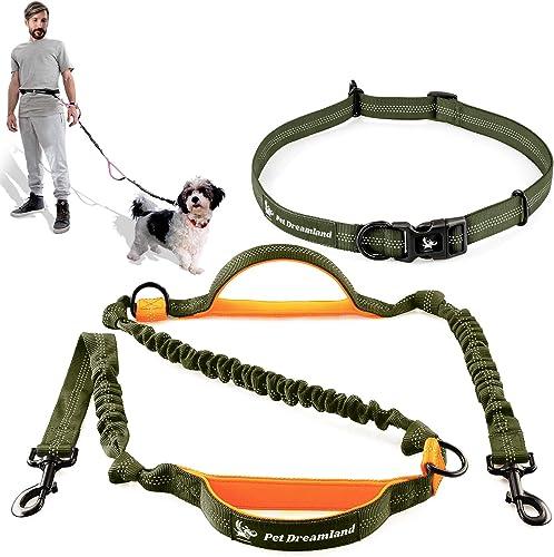 Pet Dreamland Running Dog Leash for Medium Dogs - Walking Hiking Training - Extra Long Bungee Dog Lead - Reflective L...