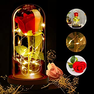Kit de Rosas, ASANMU Bella y la Bestia Rosa de Seda Roja y luz LED con Pétalos Caídos en Cúpula de Cristal Sobre una Base de Madera Mejor Regalo para día de San Valentín, Boda, Aniversario, Cumpleaños