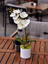 YATAI Real Touch Artificial Orchid Flowers Branches In Plastic Pot With Moss Grass Arrangement Fake Flowers Artificial Pla...