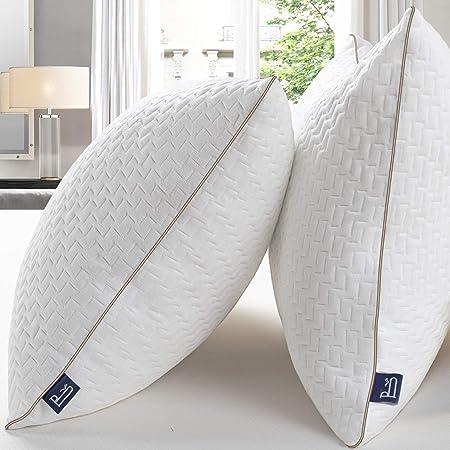 BedStory [Bambou Fibre] Oreillers Bambou 50x75 Lot de 2 avec Taies Antiacariens Amovibles, Oreillers Anti-Allergies avec Garnissage 10% 7D et 90% 3D Fibre Polyester, Oreillers Qualité Hotel