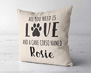 DKISEE All You Need Is Love and A Cane Corso Named Customized Throw Pillow Cover, Custom Dog Pillow Case, Cane Corso Owner Lover Gift, 26x26 Inches Pillow Cushion