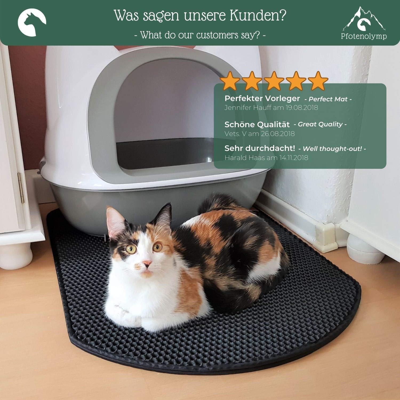 Pfotenolymp® Premium Katzenstreu Matte - grandes Katzenklo Matte como alfombra para Katzentoilette - Katzenklo Unterlage - Katzenmatte: Amazon.es: Bricolaje y herramientas