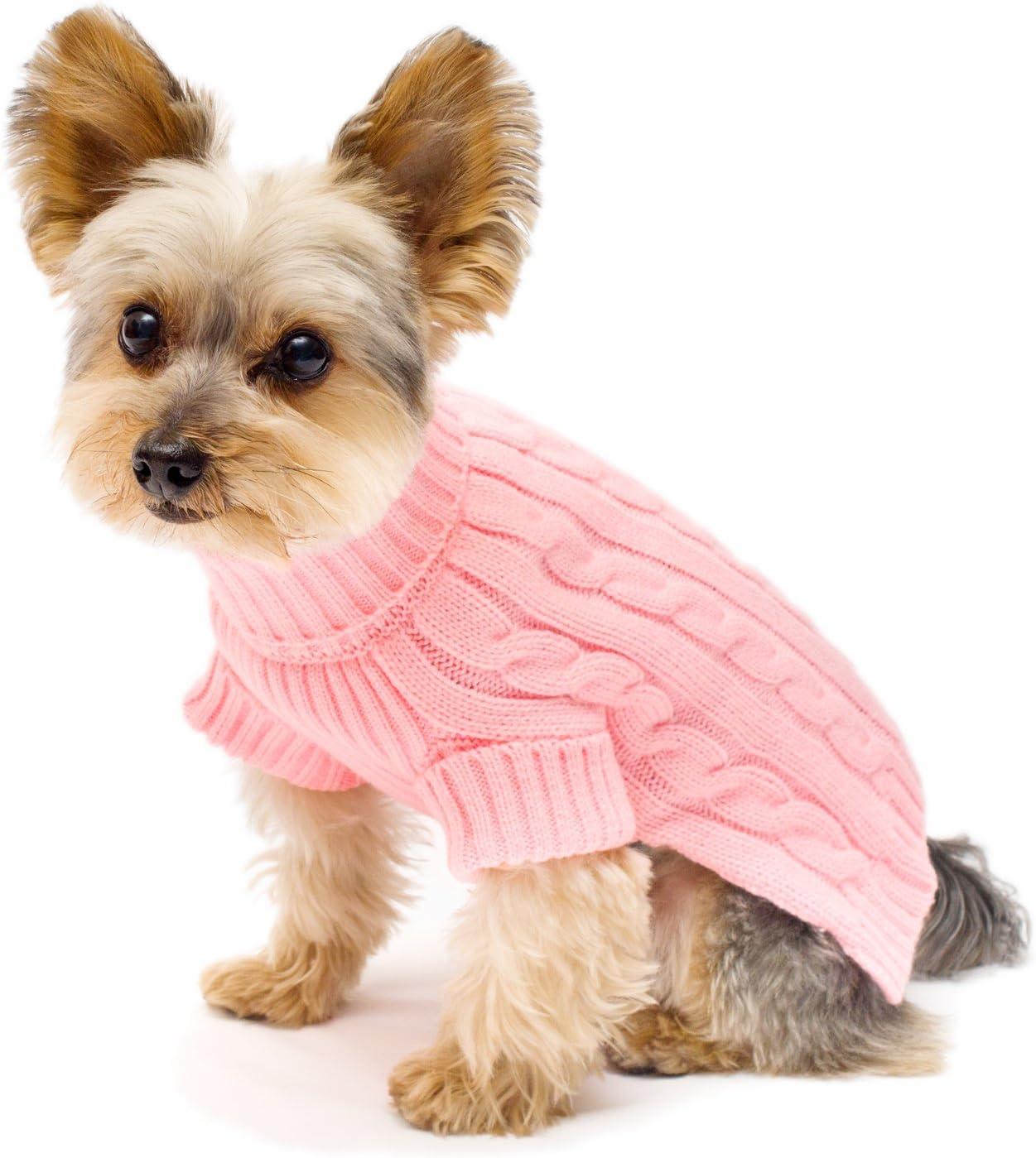 100% quality Charlotte Mall warranty Stinky G Turtleneck Sweater Dog