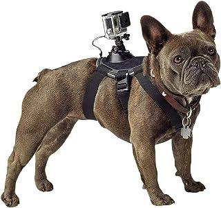 GoPro Tillbehör Fetch hundsele – lämplig för HERO4/HERO3+/HERO3/HD HERO2/Original HD HERO/HERO (officiella GoPro-tillbehör)