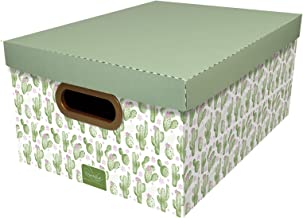 Caixa Organizadora, Protêa 2196.02.0005, Verde/Branca
