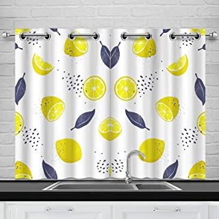 INTERESTPRINT Slices and Whole Lemons Bedding Blackout Room Darkening and Thermal Insulating Window Curtains, 2 Panels Set, 26x39 Inch with Grommets
