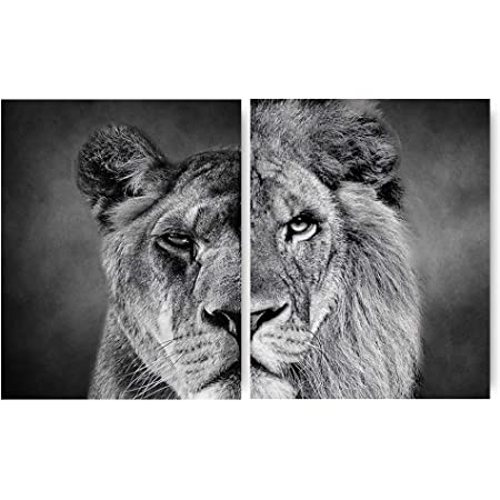 60x80cm Print On Canvas 23.6x31.5in no Frame African Lion Canvas Paintings Posters and Prints Modern Lion Head Animals Wall Art Pictures Home Decoration
