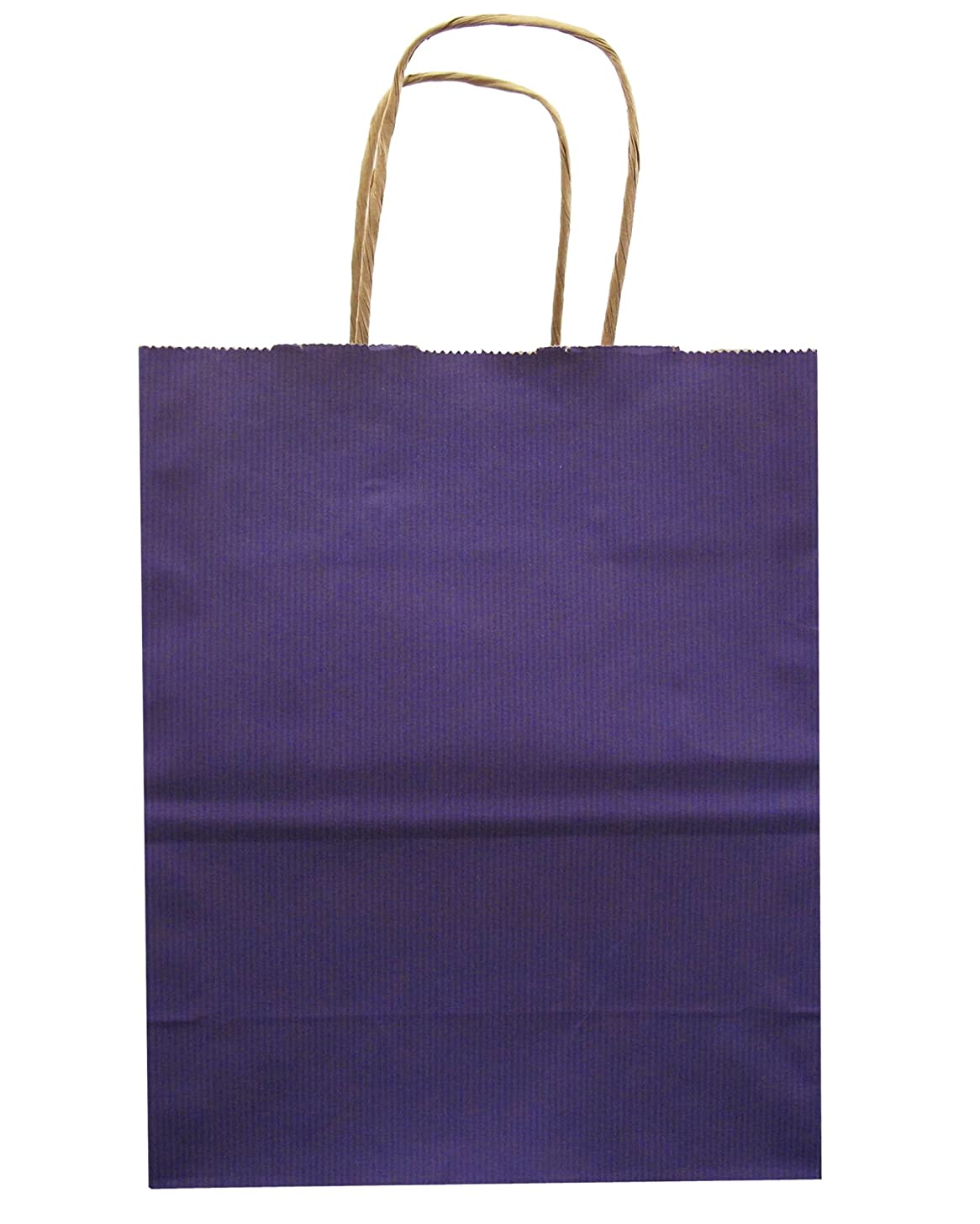 Jillson Roberts Bulk Medium Recycled Kraft Bags Available in 13 Colors, Purple, 250-Count (BMK903)