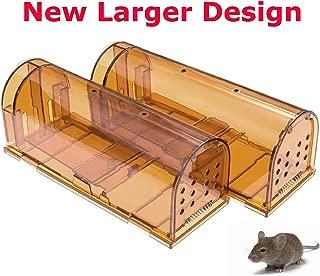 Best mole rat trap Reviews