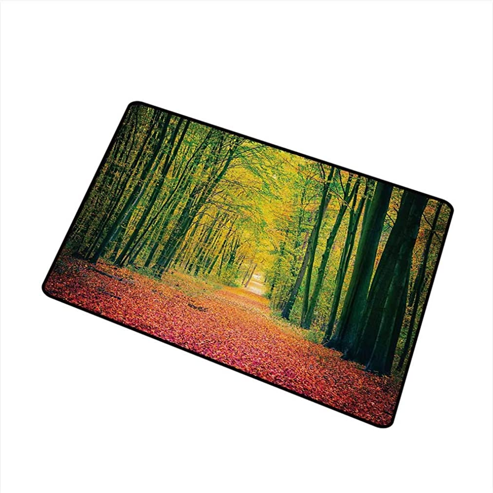 Becky?W?Carr Forest Front Door mat Carpet Pathway in Autumn Dramatic Road to Infinity Toned Warm Fall Colors Rural Scenery Print Machine Washable Door mat W29.5 x L39.4 Inch,Green
