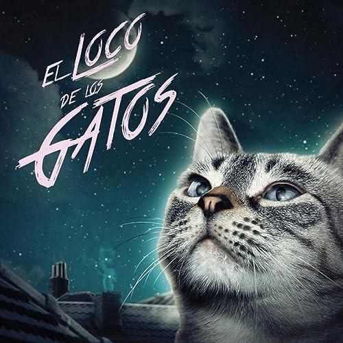 El Loco de los Gatos