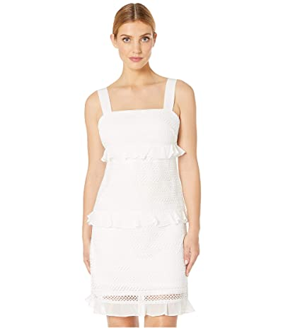 Adrianna Papell Striped Lace A-Line Dress with Ruffle (Ivory) Women