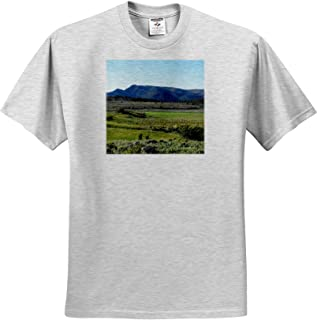 Ireland Sea T-Shirts The sea in Ireland and The Green Lush Colors on Shore 3dRose Jos Fauxtographee