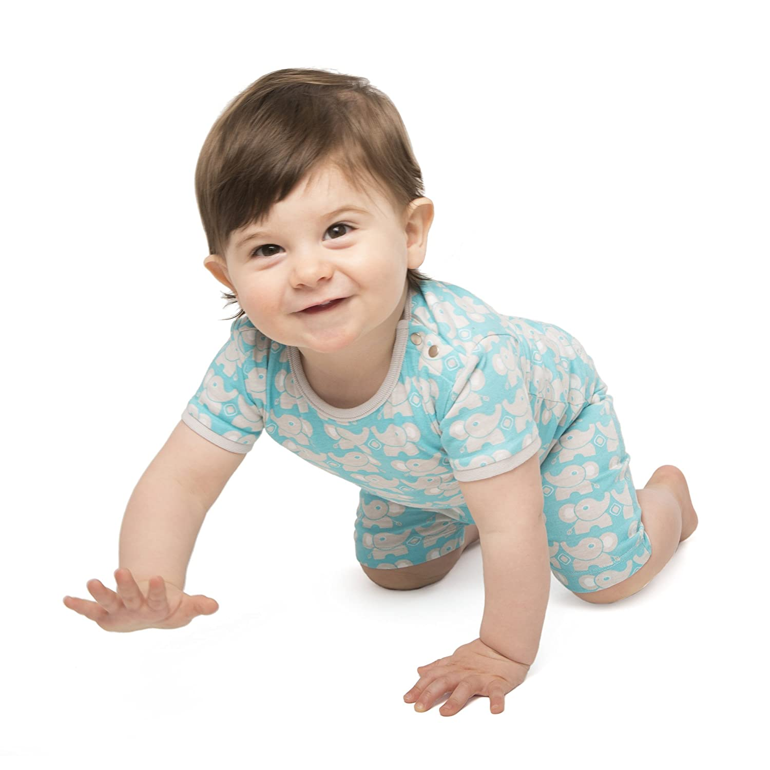 baby deedee Short Sleeve Cotton 2 Piece Tee Shirt/Shorts and Pajama Play Set, Teal Elephant, 12-18 Months