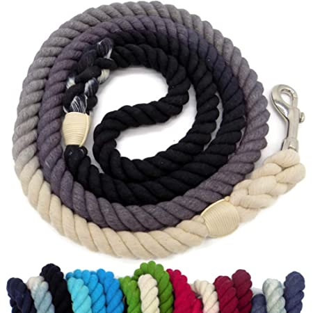 Rope Lead Small Dog Leash Ombre Rope Leash Cotton Candy Dog Leash Rope Dog Leash Puppy Leash SLO Sunset Dog Leash Dog Accessories