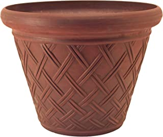 Best arcadia garden products Reviews