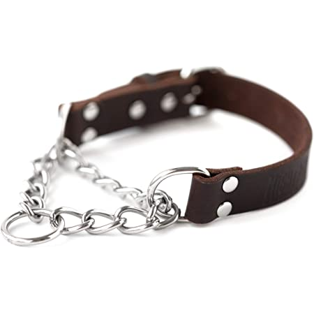 Mighty Paw Leather Training Collar, Martingale Collar, Stainless Steel Chain - Premium Quality Limited Chain Cinch Collar.