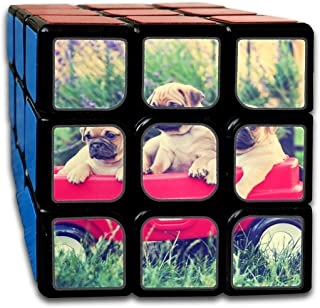 Custom 3x3 Toy Puzzle Cube Best Brain Training Toys 3x3x3 Three Pug Chihuahua Mix Chug Puppies in A Red W Cube 3 Magic Party Game for Boys Girls Kids Toddlers-55mm