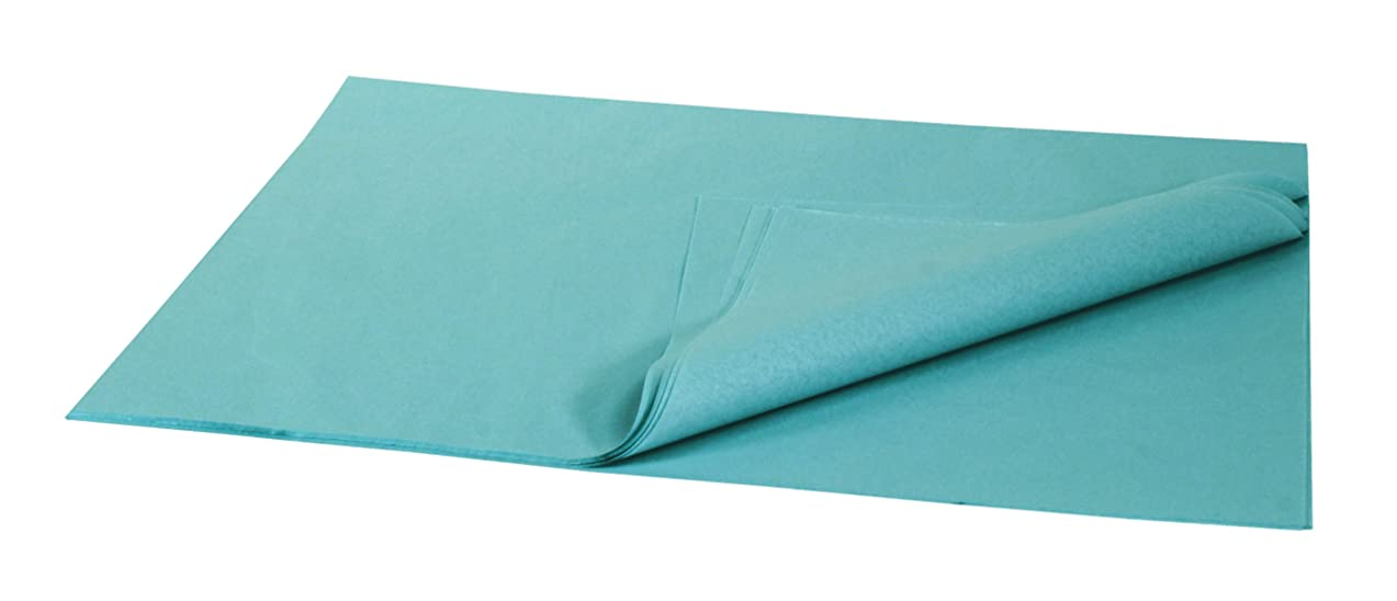 Brand New Tissue Paper Pack, 48 Sheets, 20