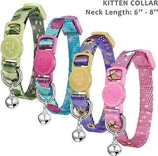 kitten collar size