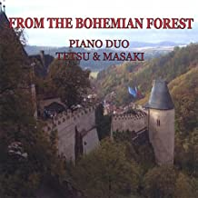 From The Bohemian Forest