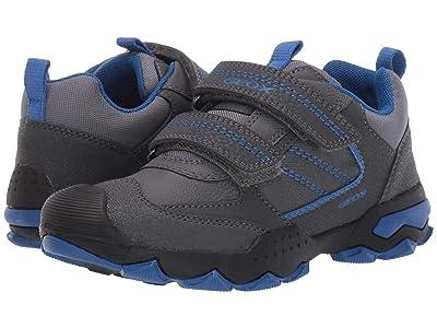 Geox Kids Jr Buller 1 (Little Kid/Big Kid) (Dark Grey/Royal) Boys Shoes