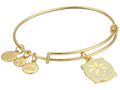 Alex and Ani Charity By Design ily Charm Bangle (Shiny Gold) Bracelet
