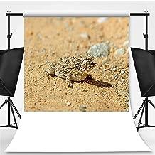 Texas Horned Lizard Theme Backdrop Cartoon Backdrops Photography Backdrop,142075,10x20ft